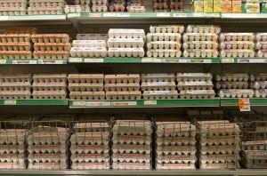 egg options
