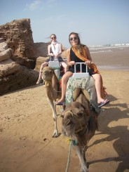 Riding camels in Essouira