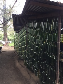 Upcycled wine bottle create a wall display
