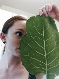 Collards are great for peek-a-boo